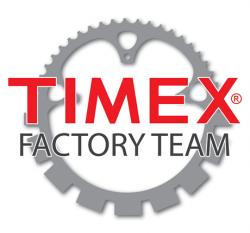 TimexFactoryTeamLogo-thumb-250x233-3523